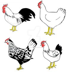 chickens_by_jenn_rushby-d380ezl